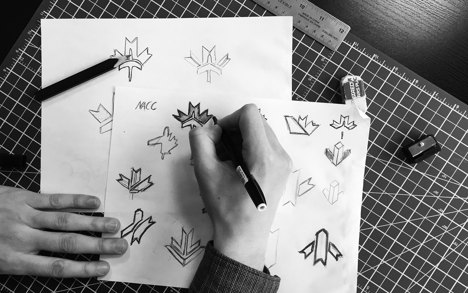 National Airlines Council of Canada - Logo Design Sketches