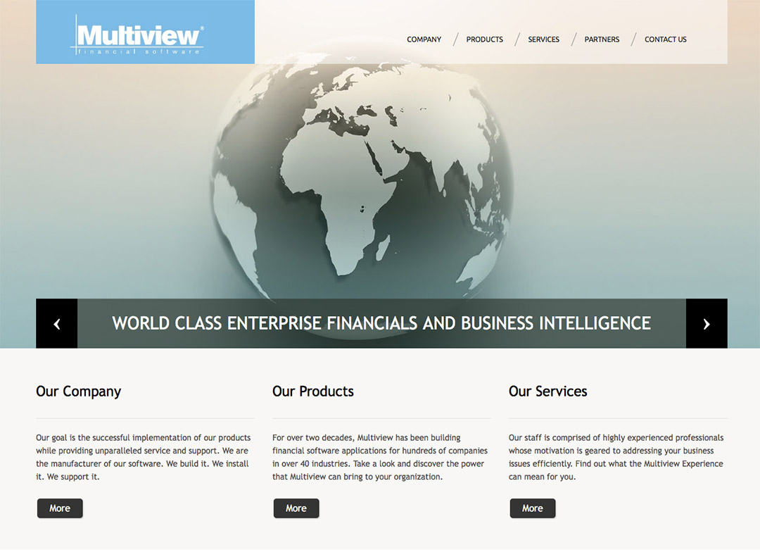 Multiview - Old Website and Logo Design