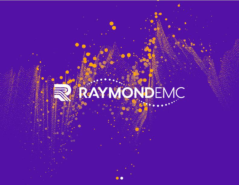 REMC - Logo Design (Reverse)